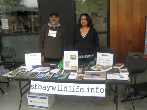 sfbaywildlife.info table at foothill college earth week faire
